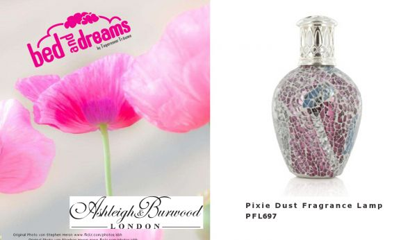 Premium Fragrance Lamp Small - Pixie Dust